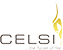 Celsi Electric Fires and Electric Fireplace Suites